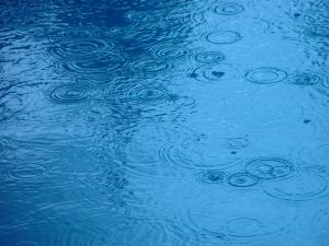 living wet
